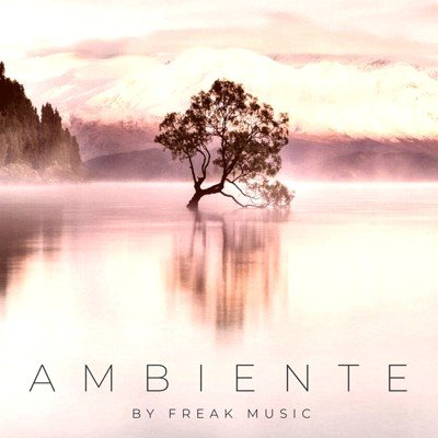 Freak Music - Ambiente