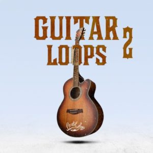 Cartel Loops - Guitar Loops 2