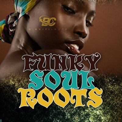 BigCitiLoops - Funky Soul Roots