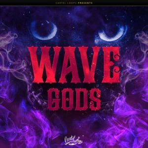 Cartel Loops - Wave Gods