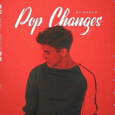 Diginoiz - Pop Changes - Pop Loops Pack