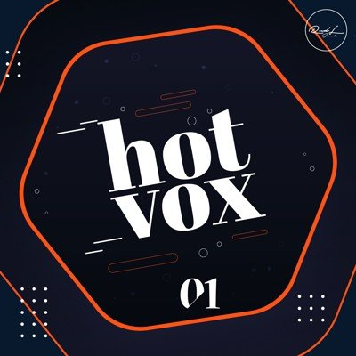 Roundel Sounds - Hot Vox Vol 1 - ANA Presets