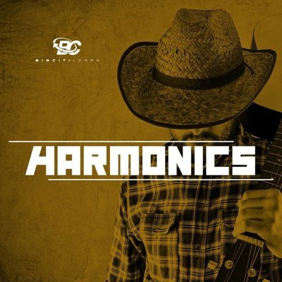 Big Citi Loops - Harmonics