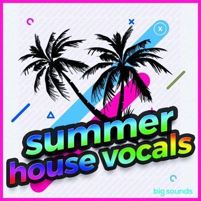 Big Sounds - Summer House Vocals