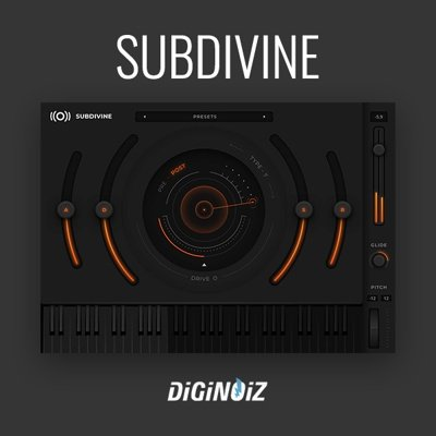 Diginoiz - Subdivine 808 VST Plug-in