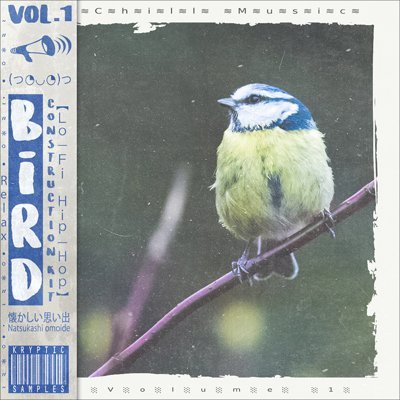 Kryptic Samples - Bird Vol.1 Lo-Fi Samples