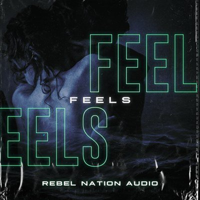 Rebel Nation Audio - Feels