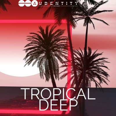 Audentity Records - Tropical Deep Loops