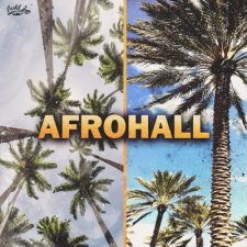 Cartel Loops - Afrohall Kits