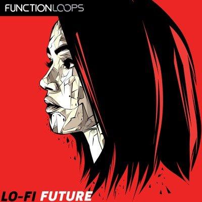 Function Loops - Lofi Future