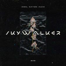 Rebel Nation Audio - Skywalker