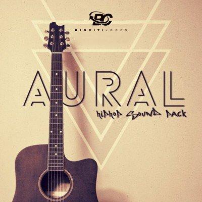 Big Citi Loops - Aural Hip Hop Sound Pack