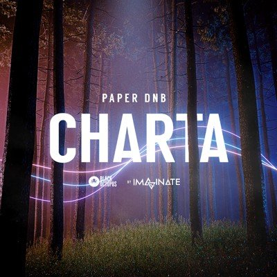 Black Octopus Sound - Charta - Paper DnB Music Loops