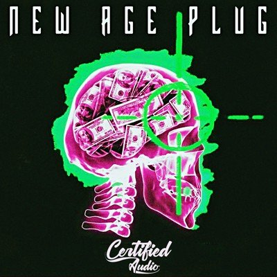 Certified Audio - New Age Plug