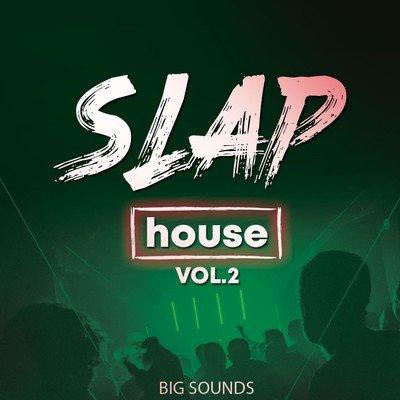 Big Sounds - Slap House Vol.2