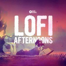 Black Octopus Sound - LoFi Afternoons (Music Loops)