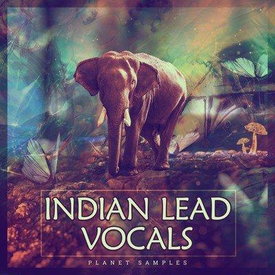 Planet Samples - Indian Lead Vocals Samples