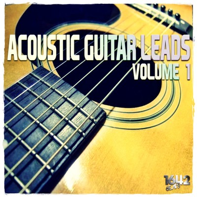 Acoustic Guitar Leads Vol 1