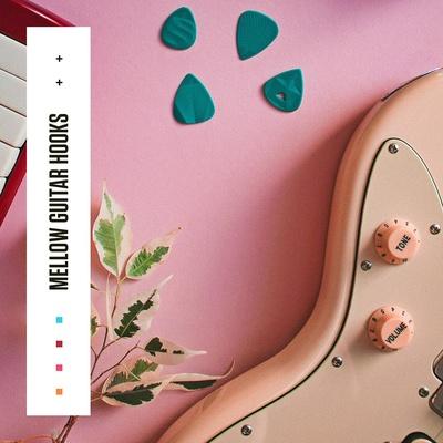 Diginoiz - Mellow Guitar Hooks Samples